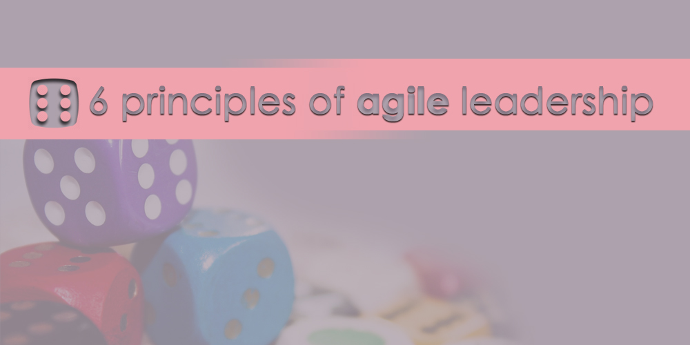 The 6 principles of agile leadership