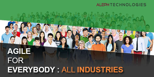 Agile for Everybody: All Industries