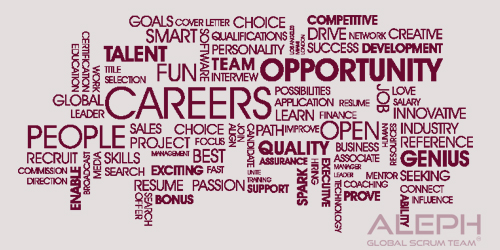 Career Opportunities for PMP® Certified Professionals
