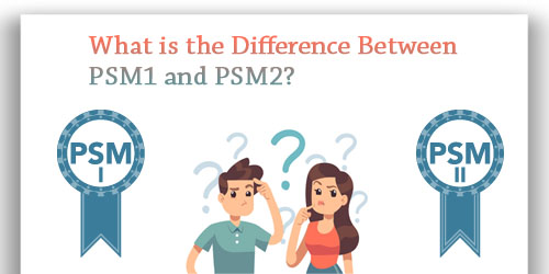 What is the Difference Between PSM1 and PSM2?